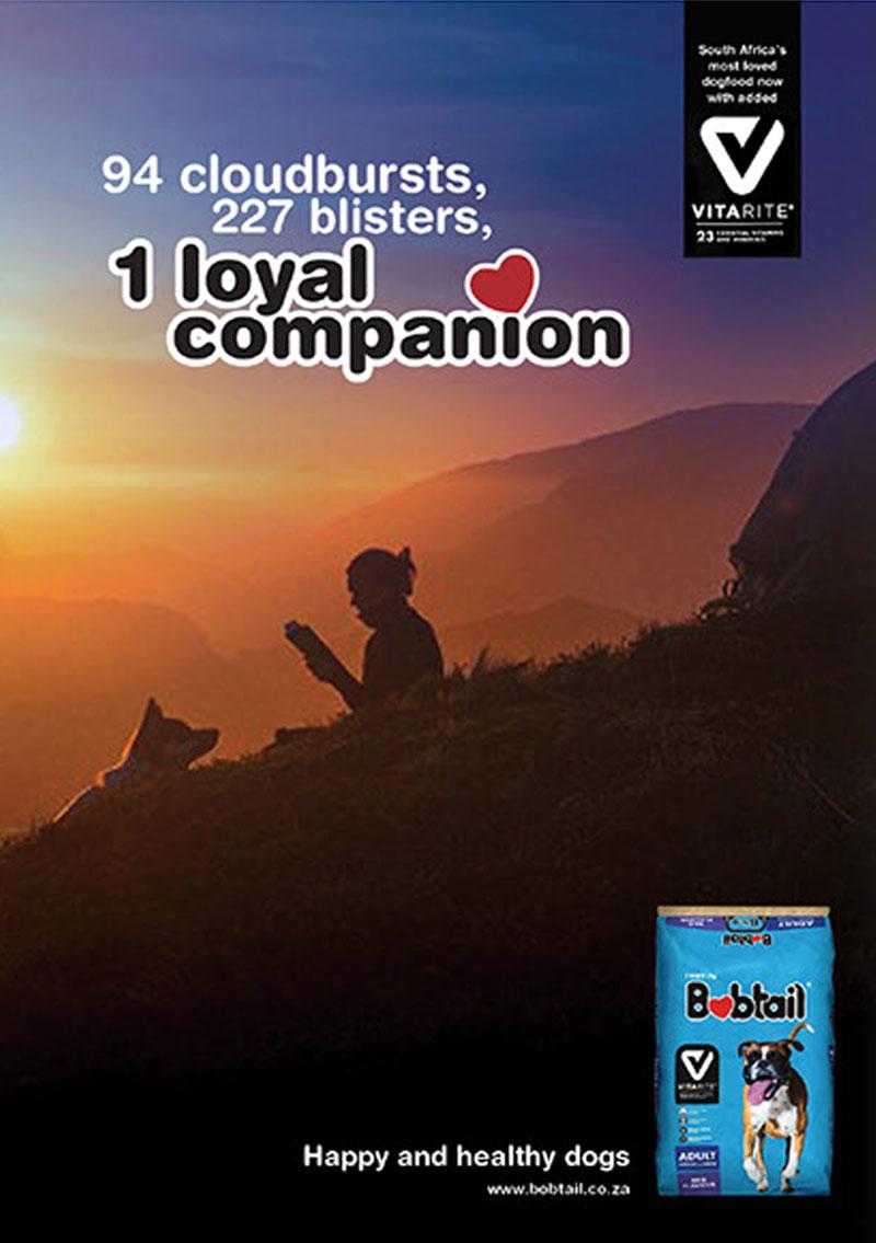 Bobtail Journey Campaign